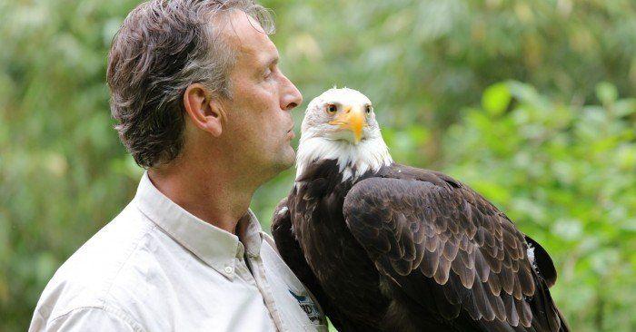 Kasteel Radboud - Valkenier Birdlive met Cheyenne